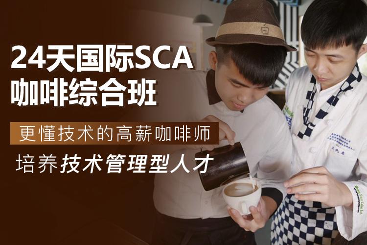 24天国际SCA咖啡综合班M